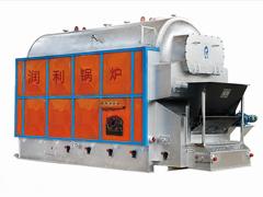 燃生物质蒸汽热水锅炉