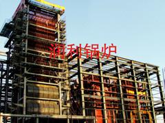 燃煤工业电站锅炉